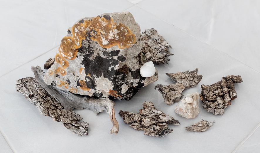 eremite1